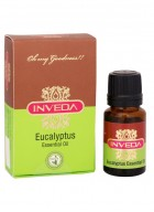 Inveda Eucalyptus Essential Oil (Pack of 2)