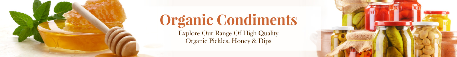 Organic Condiments