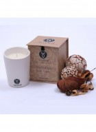SeaSoul Massage Candle - Coco Bliss