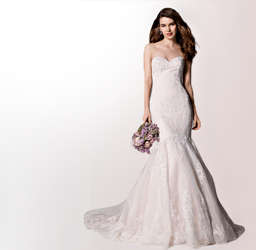 Beauty Products for bride
